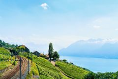 Железнодорожный путь на женевском озере Швейцарии террас виноградника Lavaux Стоковые Изображения
