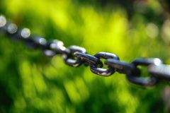 Железные звенья цепи Стоковое Фото