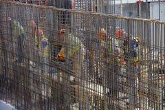 Железный работник связывая усиливающ стальные пруты Стоковое Фото