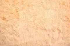 Желтая предпосылка, текстура шотландки стоковые фотографии rf