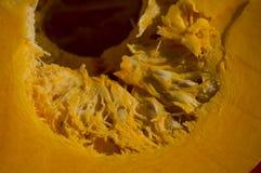 Желтая пульпа тыквы стоковое изображение