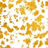 Желтая ржавчина мха Стоковая Фотография RF