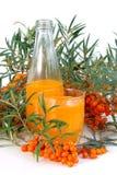 Желтоватый сок терния Стоковые Фотографии RF