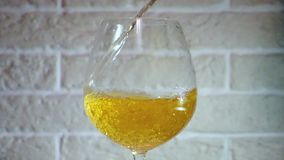 Желтое вино лить в стекло в замедленном движении акции видеоматериалы