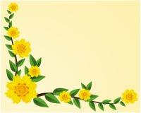 Желтое и белое цветение текстуры цветет с зелеными лист на светлой золотой рамке украшенной предпосылкой с текстурой предпосылки  иллюстрация вектора