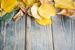 Желтое оформление сезона предпосылки листьев осени деревянное стоковое фото