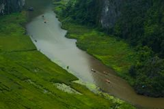 Желтое поле риса на реке Дуна неправительственной организации в Tam Coc Bich Дуне от взгляд сверху горы в Ninh Binh стоковые изображения