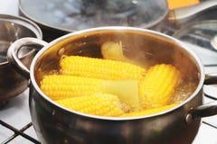 Желтое тушеное мясо мозоли в кастрюльке Приправленный обедающий стоковая фотография