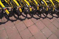 Желтые велосипеды на автостоянке велосипеда Стоковая Фотография RF