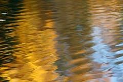 Желтые деревья осени отражая в воде стоковое фото rf