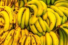 Желтые и зеленые бананы как предпосылка стоковое изображение rf