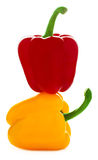 Желтые и красные перцы Стоковая Фотография