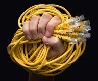 Желтые кабели RJ45 Стоковое Изображение