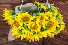 Желтые красивые солнцецветы в деревянной коробке стоковые фото