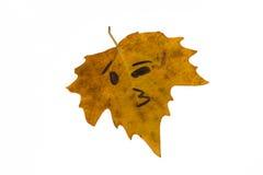 Желтые лист с изображением поцелуя стороны нет изолят Стоковая Фотография RF