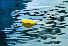 Желтые лист с тенью в воде бирюзы Стоковая Фотография