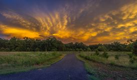 Желтые облака шторма на Horizion Стоковое Изображение