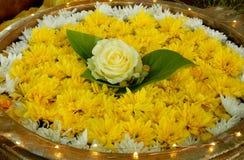 Желтые орнамент цветка, роза желтого цвета и chrisantheme Стоковое Фото