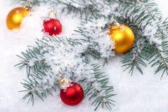 Желтые рождества красивые и красные шарики с ветвью и снегом ели на белой предпосылке Стоковые Изображения RF