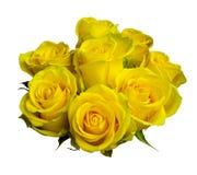 Желтые розы букет желтых роз изолированных на белом backgrou Стоковые Фотографии RF