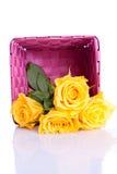 Желтые розы в розовой коробке Стоковое фото RF