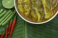 Желтые рыбы луциана карри с стержнями лотоса, южной тайской пряной едой и свежим овощем в белом блюде на банане листают/селективн Стоковые Фото