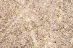 Желтые свежие блинчики служили на плите с сахаром какао Стоковое Фото