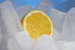 Желтые сочные свежие лимоны замерзают на красивом голубом льде, морозной свежести стоковое фото rf
