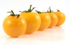 Желтые томаты Стоковые Изображения