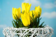 Желтые тюльпаны на предпосылке неба Стоковая Фотография