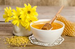 Желтые цветки и продукты мед пчелы, цветень, соты Стоковое фото RF