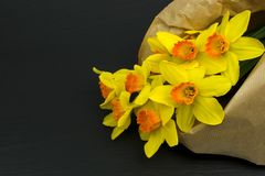 Желтые цветки narcissus на черной таблице стоковая фотография rf