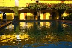 желтые цветы отражений красных цветов Мексики цветов син Стоковое Изображение RF