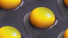 Желтые яичные желтки сварены в skillet стоковые изображения
