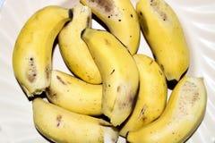 Желтый банан стоковое изображение