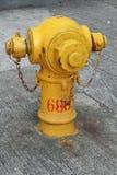 Желтый жидкостный огнетушитель на Гонконге Стоковые Изображения