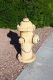 Желтый жидкостный огнетушитель стоковая фотография rf