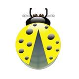 Желтый жук на белой предпосылке Стоковые Изображения