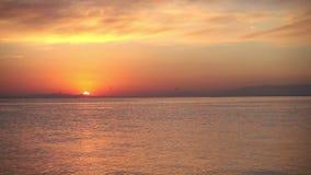 Желтый заход солнца на океане акции видеоматериалы