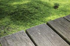 Желтый маленький цветок на зеленой траве с деревянной предпосылкой Стоковые Изображения