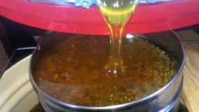 Желтый мед сток-видео