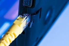 Желтый переключатель интернета подключенный к компьтер-книжке Стоковое Изображение