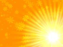 Желтый свет Sun с цветками Стоковые Изображения