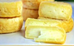 Желтый сыр овец Стоковые Изображения RF