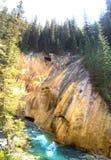Желтый утес в сценарном каньоне Johnston, национальном парке Banff стоковые изображения