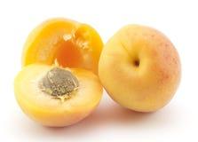 желтый цвет абрикоса Стоковое фото RF