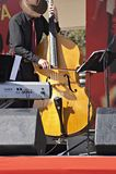 желтый цвет баса Стоковое Изображение RF