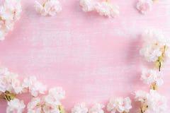 желтый цвет весны лужка одуванчиков предпосылки полный Ветви весны зацветая на розовой деревянной предпосылке вал весны ветви цве стоковое фото