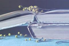 желтый цвет весны лужка одуванчиков предпосылки полный Стог старой worn книги с малой мимозой разветвляет Винтажный обрабатывать  стоковая фотография