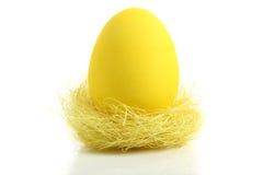 желтый цвет гнездя пасхального яйца Стоковые Изображения